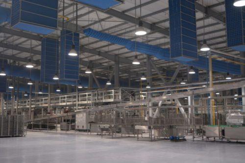 Edita Factory